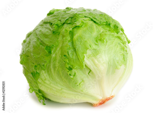 Wallpaper Mural Cabbage lettuce isolated on white