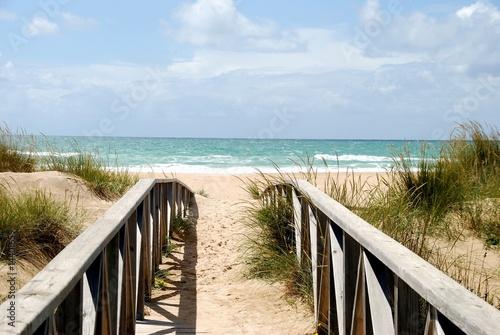 Steg zum Strand #14401659