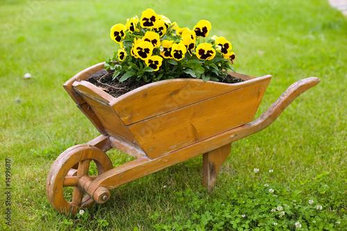 Brown barrow with yellow flowers Fototapeta