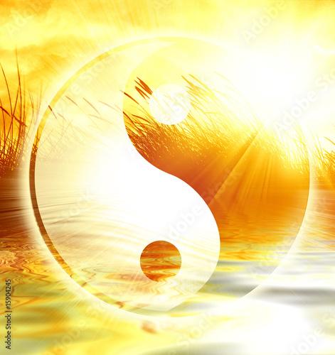 Canvas Print yin yang