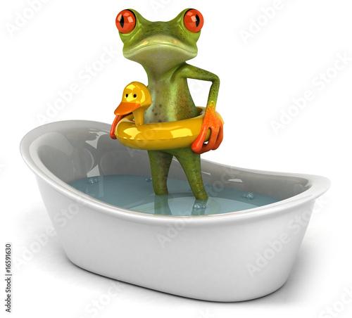 Foto Grenouille dans son bain
