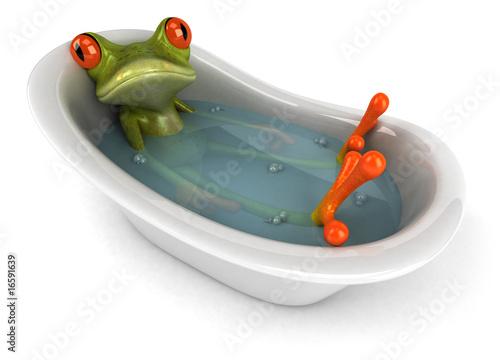 Fototapeta Grenouille dans son bain