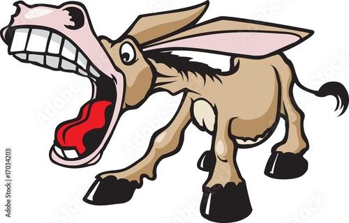 Braying Donkey Fototapeta