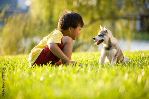 Canvas Print Young Asian boy playing with Alaskan Klee Kai puppy on grass