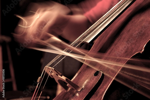 Stampa su Tela Cello Being Played