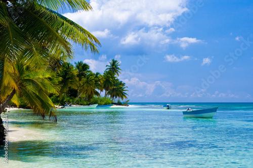 Fotografie, Obraz Green palms on a white sand beach