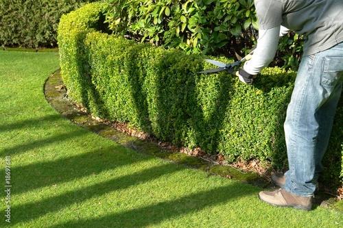 Obraz na płótnie gardener