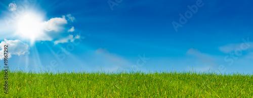 Obraz na plátně ciel bleu soleil et herbe verte - paysage vert - prairie