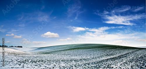 Winter landscape #19496631