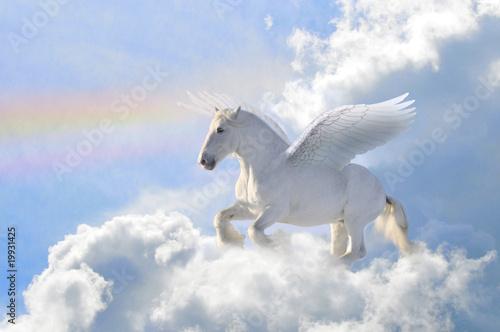 Carta da parati pegasus in the clouds