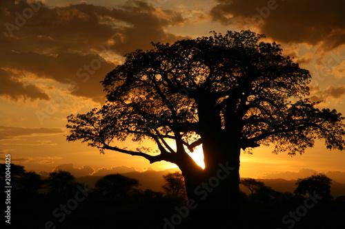 Plakat African Sunset  Tanzania, Afryka
