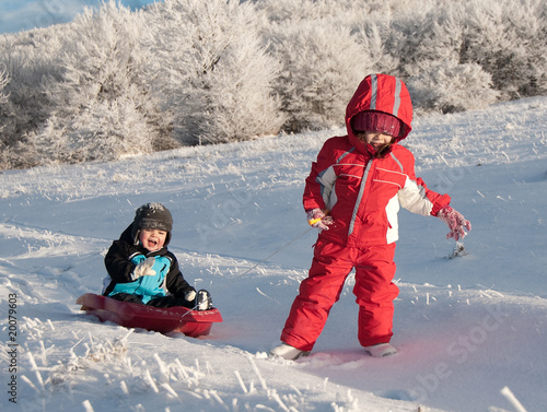 Girl pulling her little brother in a sledge in winter
