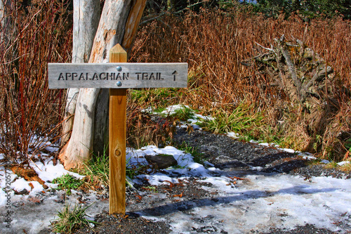 Canvas Print appalachian trail in Great Smoky Mountains, USA