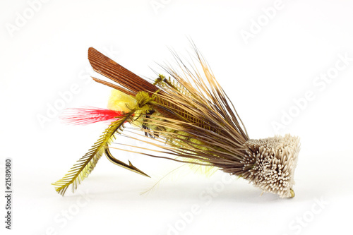 Fotografie, Tablou Grasshopper fly for angling