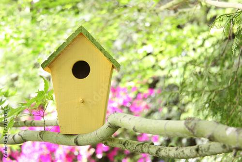 Photographie birdhouse