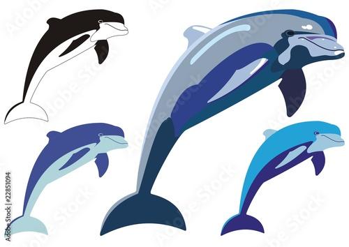 Valokuvatapetti dolphin jump illustration