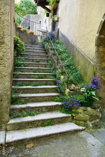 Fototapeta premium Kwiecisty schody w wiosce Provence