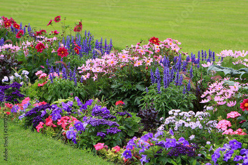 Valokuva Flowerbed