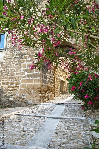 Ruelle médiévale en Provence à Grillon
