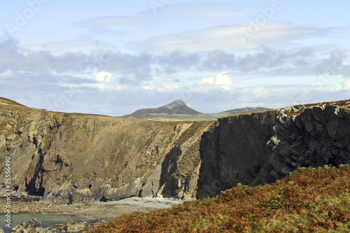 Stampa su Tela Ramsey Island Pembrokeshire Wales UK