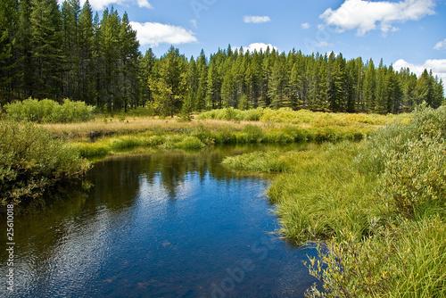 Tablou Canvas Trail Creek