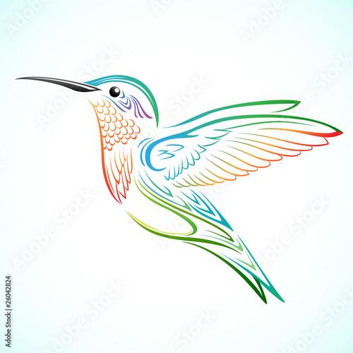 Fotografia Kolorowy koliber