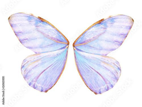 Photo Fairy Wings