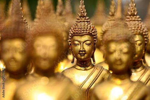 buddha status #26239412