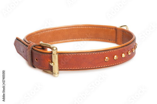 brown leather collar isolated over white background Fototapet