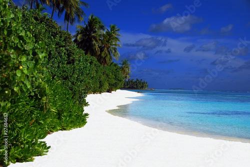 Carta da parati maldives