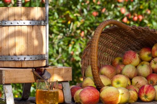 Fotomural Freshly squeezed Apple Juice