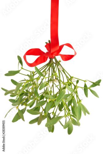 Stampa su Tela Mistletoe isolated