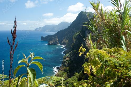 Madeira, north-east coast near Santana #28451612