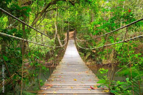 Naklejka premium Most do dżungli, park narodowy Khao Yai, Tajlandia