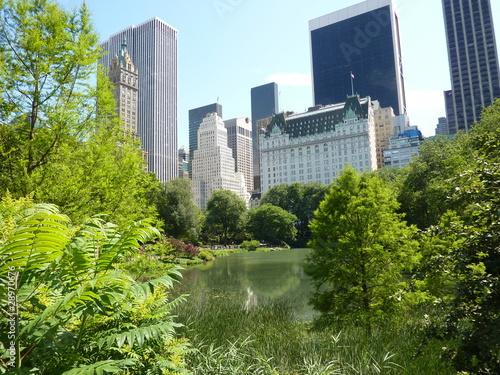 Fototapeta Central Park New York