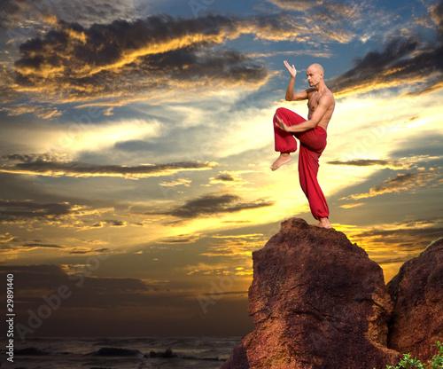 Photo Martial Artist