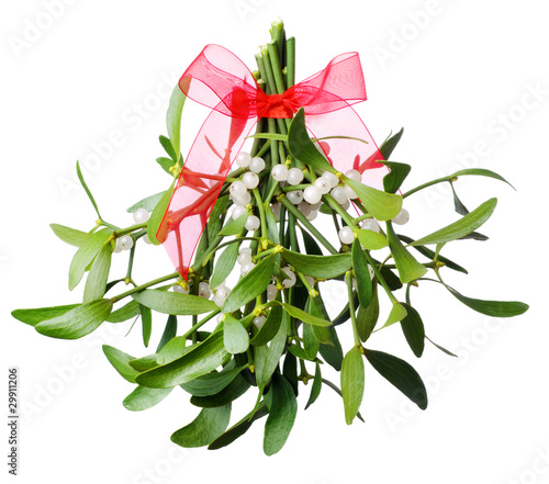 Fotografia Hanging green mistletoe with a red bow