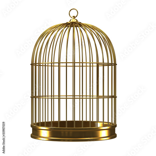 3d Gilded bird cage Fototapeta
