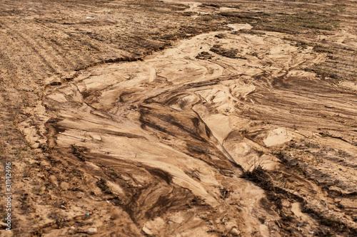Fotografia Soil erosion