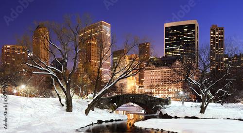 Fotografia New York City Manhattan Central Park panorama at dusk