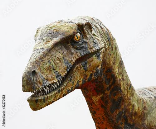 Fototapeta premium Deinonychus głowa dinozaura na białym tle