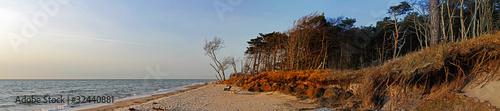 Fischland-Darß Panorama #32440881
