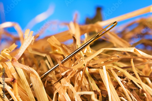 Canvas Print Needle in a haystack