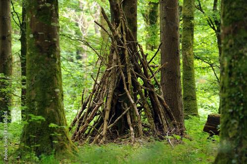 Fotografie, Tablou Hut in forest