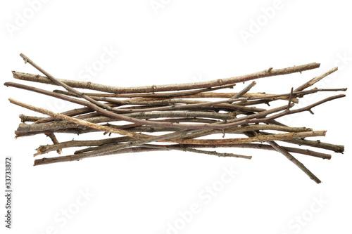 Sticks and twigs isolated Fototapeta