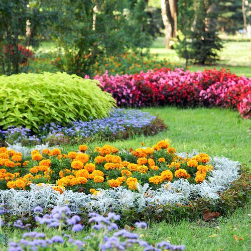 Fotografia flower landscaping