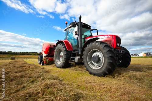 Wallpaper Mural tractor collecting haystack in the field