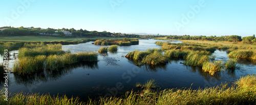 Fotografie, Obraz natural marshlands