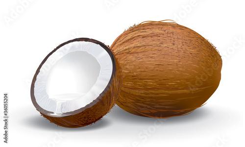 Obraz na płótnie Coconuts