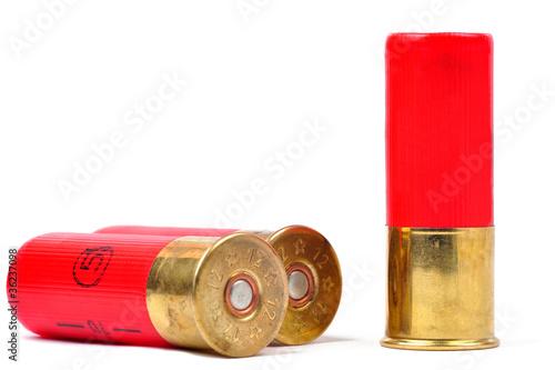 Fotografia Shotgun Shells